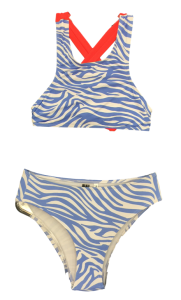 Bikini Zebra Azulao 1_clipped_rev_1 (Medium)